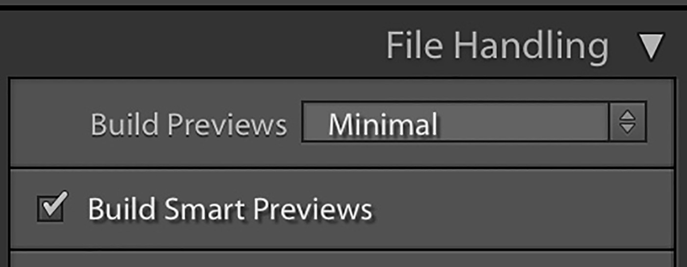 10 Lightroom Hacks You Probably Didn't Know - Build Smart Previews at import