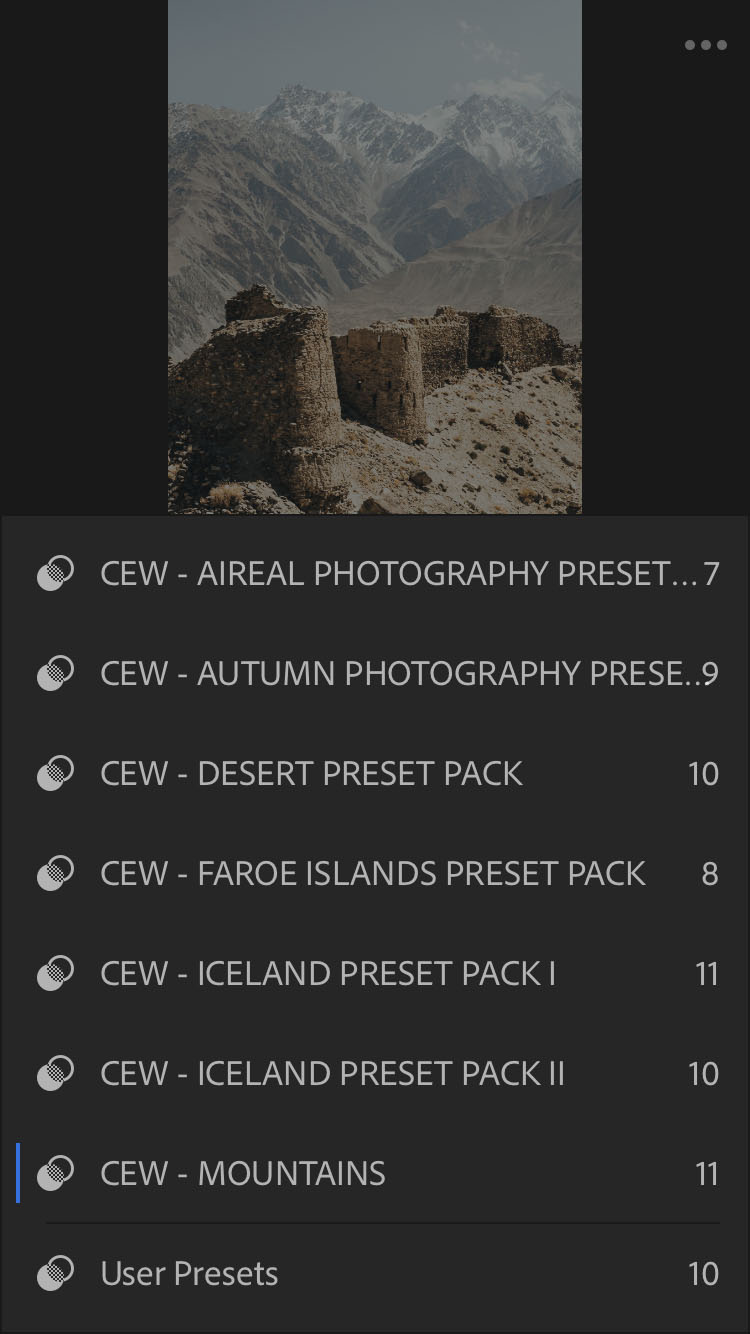 All your Lightroom CC presets should now be visible here too.